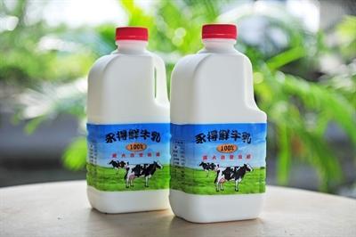 推薦!台灣在地優質好乳 Desolate