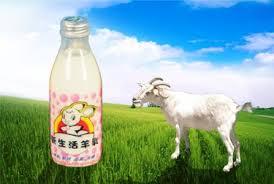 推薦!台灣在地優質好乳 濤 胡