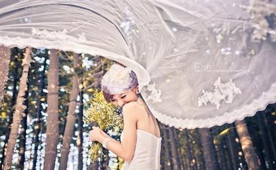 【粉多女人心】夢想中的婚紗禮服 蕙婷 余