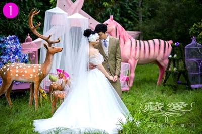 【粉多女人心】夢想中的婚紗禮服 辰 星