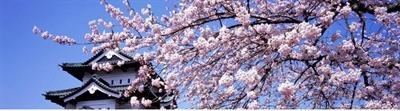 過年旅遊行程推薦 Yu Lin