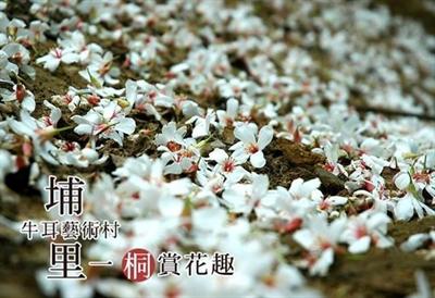 2015 桐花季大募集! 鄭翠芳