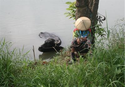 台北電影節:必劃位片單前3部 培波 陳