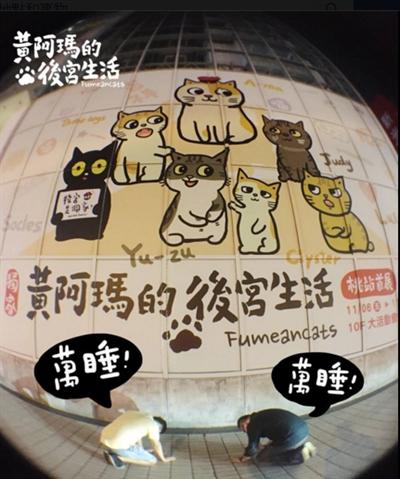 募集:最萌寵物粉絲團 安琪 黃
