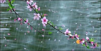 募集:那首歌詠春天的詩 敬浩林