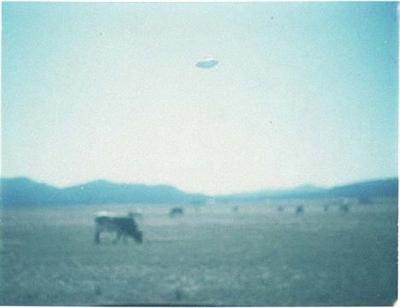 超驚悚 UFO 照片大募集 陳宇輝