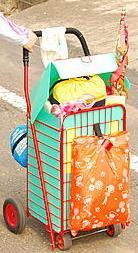 買菜好幫手!秀出你的菜籃推車! Chen Karen
