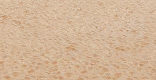 愛地球做環保大家一起淨灘去! Li Lili