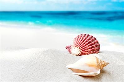 愛地球做環保大家一起淨灘去! A.z. Yeh