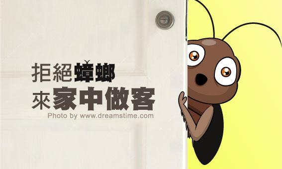 【粉多妙招】拒絕蟑螂來家中做客