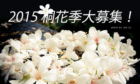 2015 桐花季大募集!