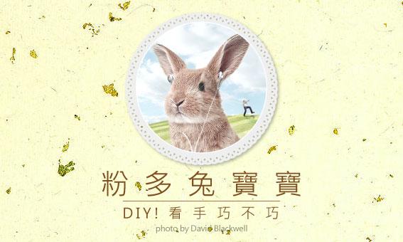 【粉多兔寶寶】DIY!看手巧不巧