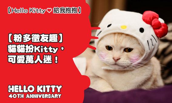 【粉多徵友趣】貓貓扮Kitty,可愛萬人迷!