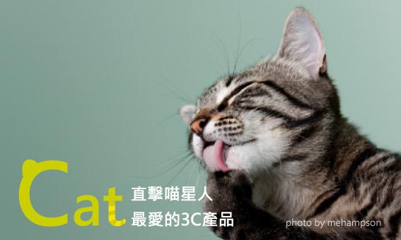 【粉多貓奴】直擊喵星人最愛的3C產品