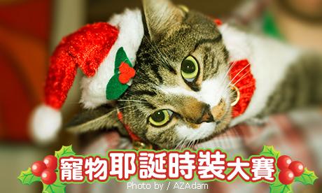 【粉多耶誕快樂】寵物耶誕時裝大賽