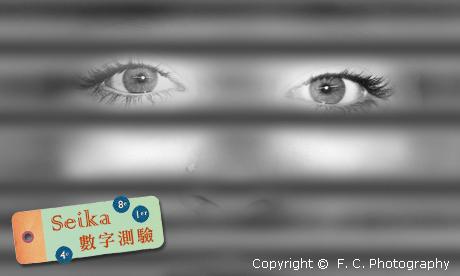 【Seika-數字占卜】消失吧!盲點!