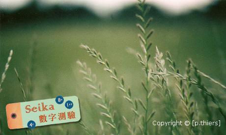 【Seika-數字占卜】如何更有力的實現夢想?
