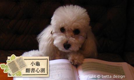 【小龜-翻書心測】有出國唸書的機會嗎?