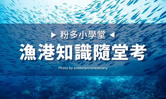【粉多小學堂】漁港知識隨堂考