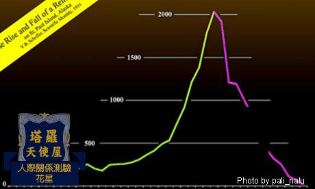 【花星-塔羅】我的事業成長曲線