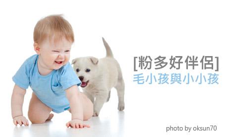【粉多好伴侶】毛小孩與小小孩